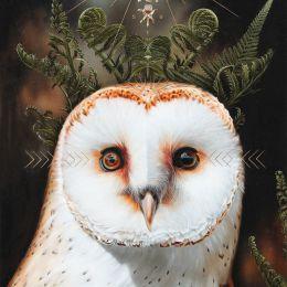 Josie Morway 超现实主义鸟类绘画欣赏