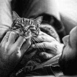 Sabrina Boem 猫咪的第一次