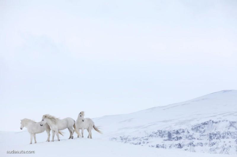 Drew Doggett 自然摄影欣赏