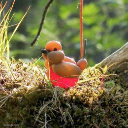 Terry James Cook 创意气球艺术 可爱的林中小鸟