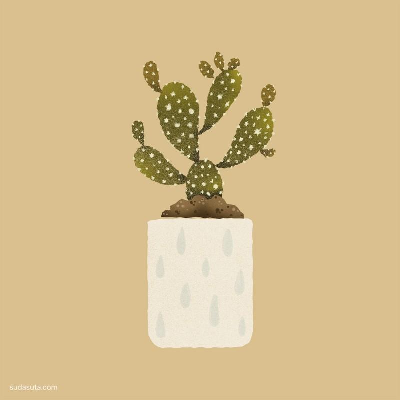 Alberto Cerriteño 植物的视觉艺术