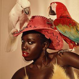 "Benjo Arwas 时尚摄影欣赏 ""Birds Of Paradise"""