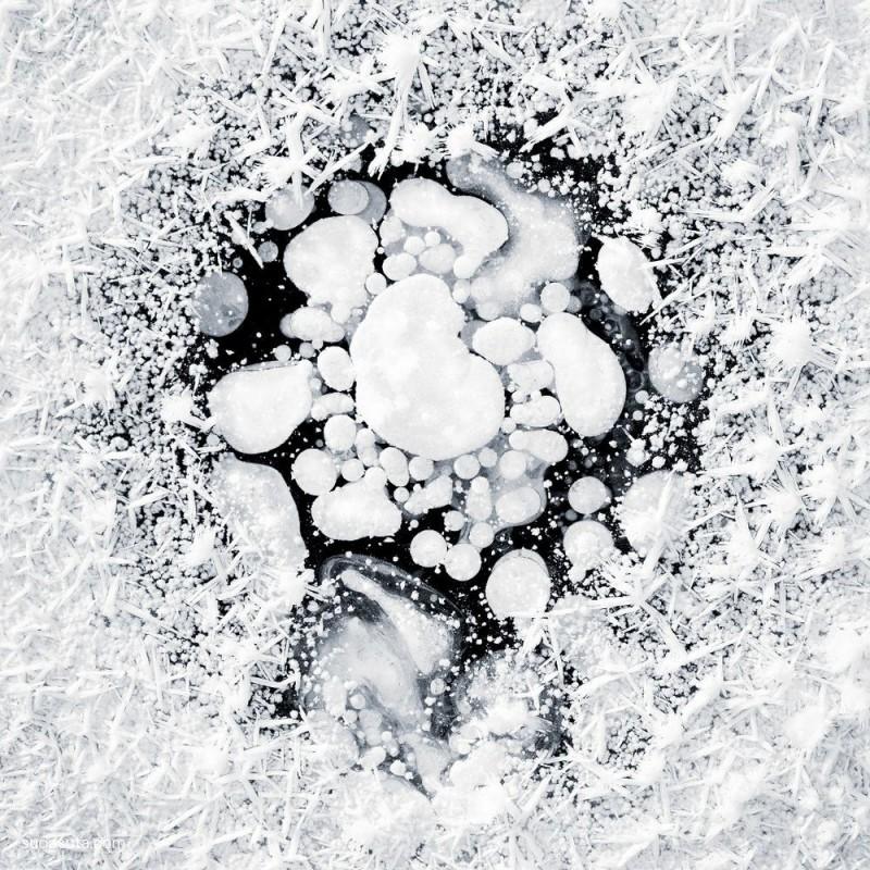 John Muir 冰雪的真相 自然摄影欣赏