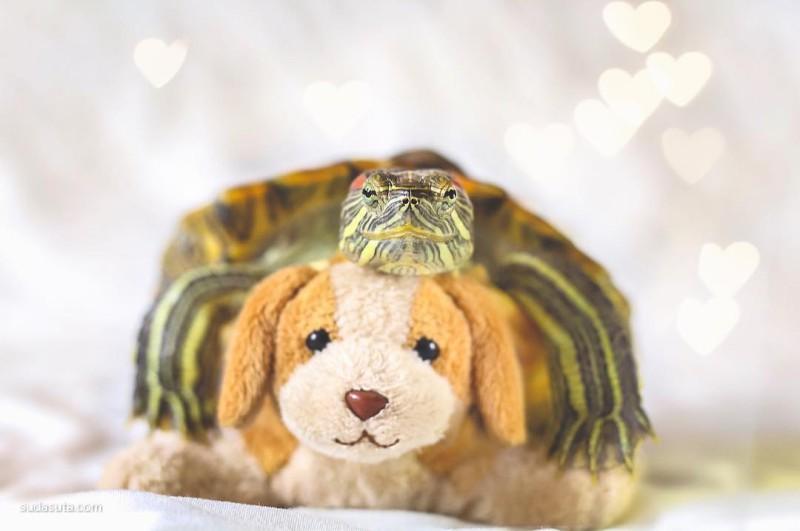 Squishy 和 Rosy 宠物们的幸福时光