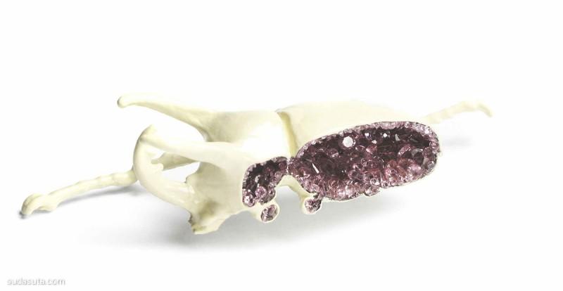 Märta Mattsson 珠宝和甲壳虫 首饰设计欣赏