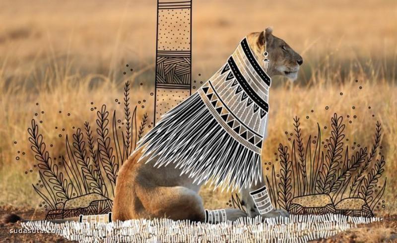 Rohan Sharad Dahotre 动物的新衣 有趣的手绘插画作品