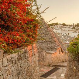 去 Alberobello 旅行
