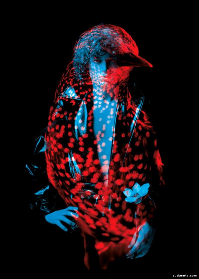 Helmo 野生动物 时尚摄影欣赏