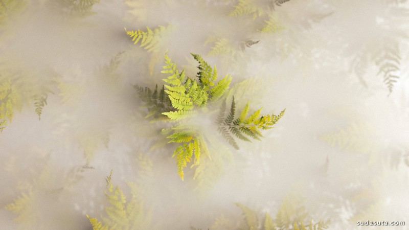 Andrea Philippon 3D自然 植物渲染作品欣赏