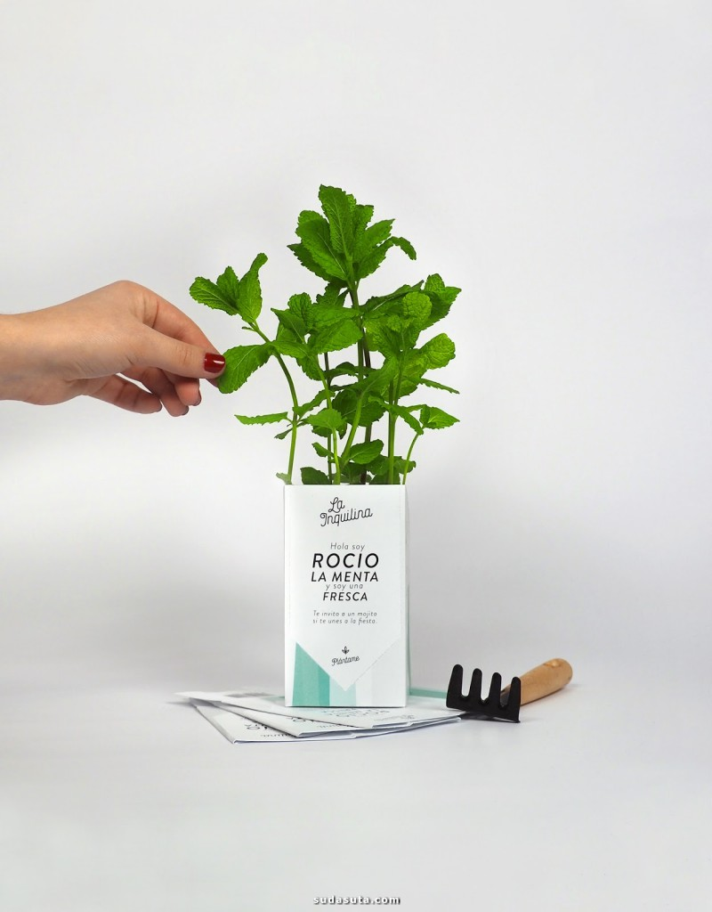La Inquilina 绿色植物包装设计欣赏
