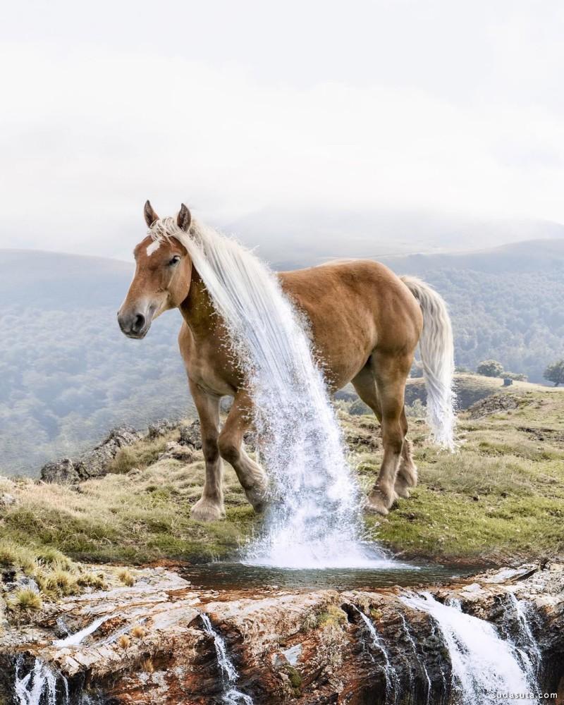 Luisa Azevedo 动物与自然地数字艺术 照片合成作品欣赏