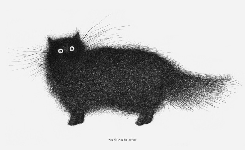 Luis Coelho 不一样的猫咪插画