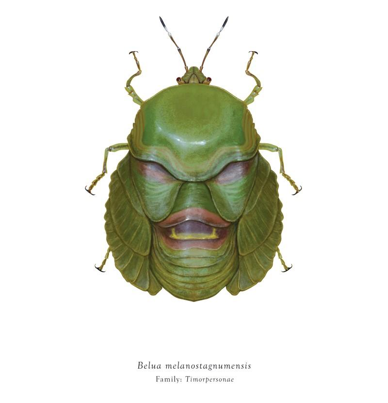 Richard Wilkinson 各种各样的虫子