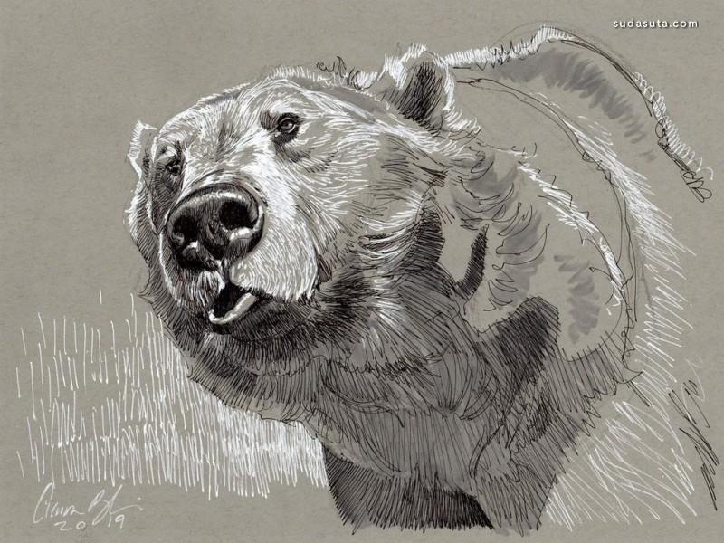 Aaron Blaise 动物插画欣赏