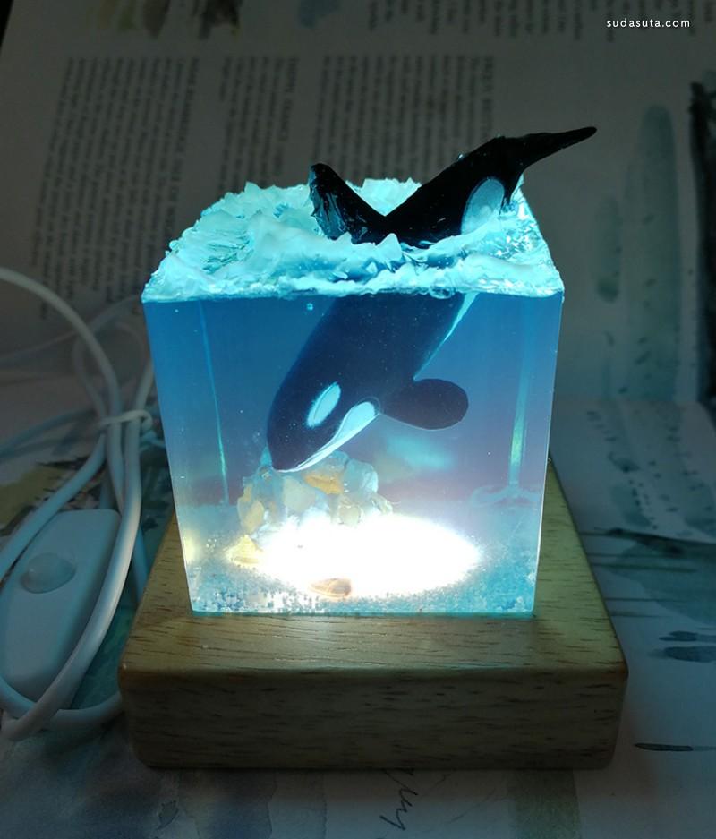 桌鱼工作室 手掌中的海洋!