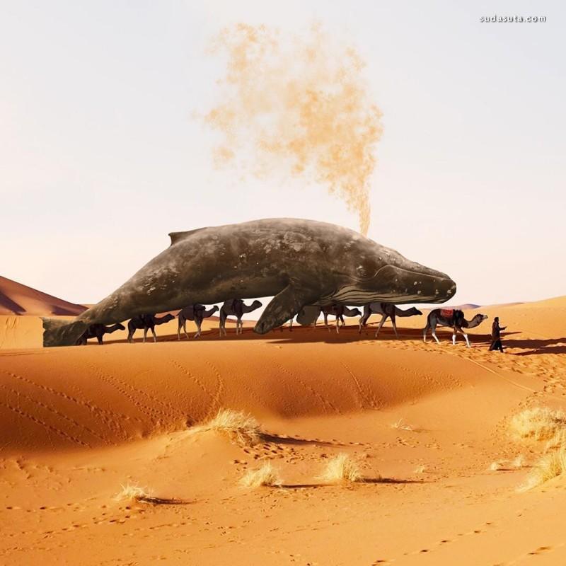 Martijn Schrijver 超现实主义照片合成