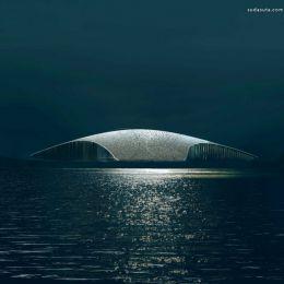 鲸鱼 在北极 建筑设计欣赏