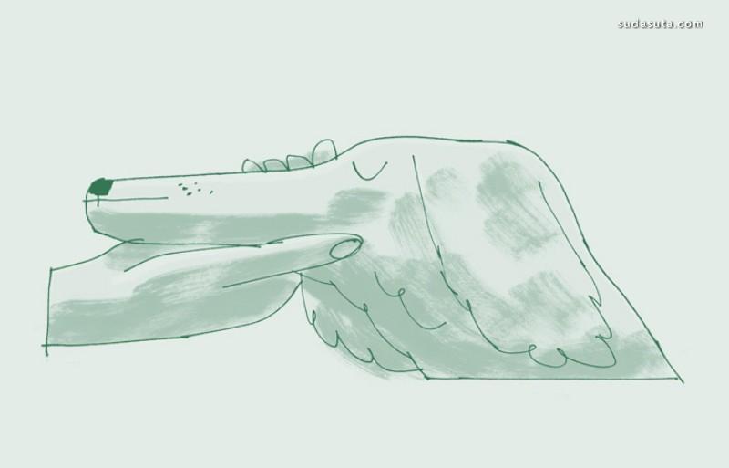 Jennie Webber《野生动物绘画》