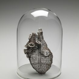 Anne Mondro 勾线解剖学