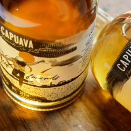 CAPUAVA 1886 品牌设计欣赏