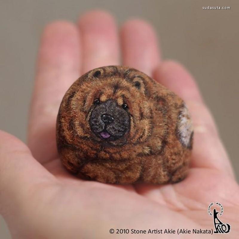 中田明晃 有趣的石头