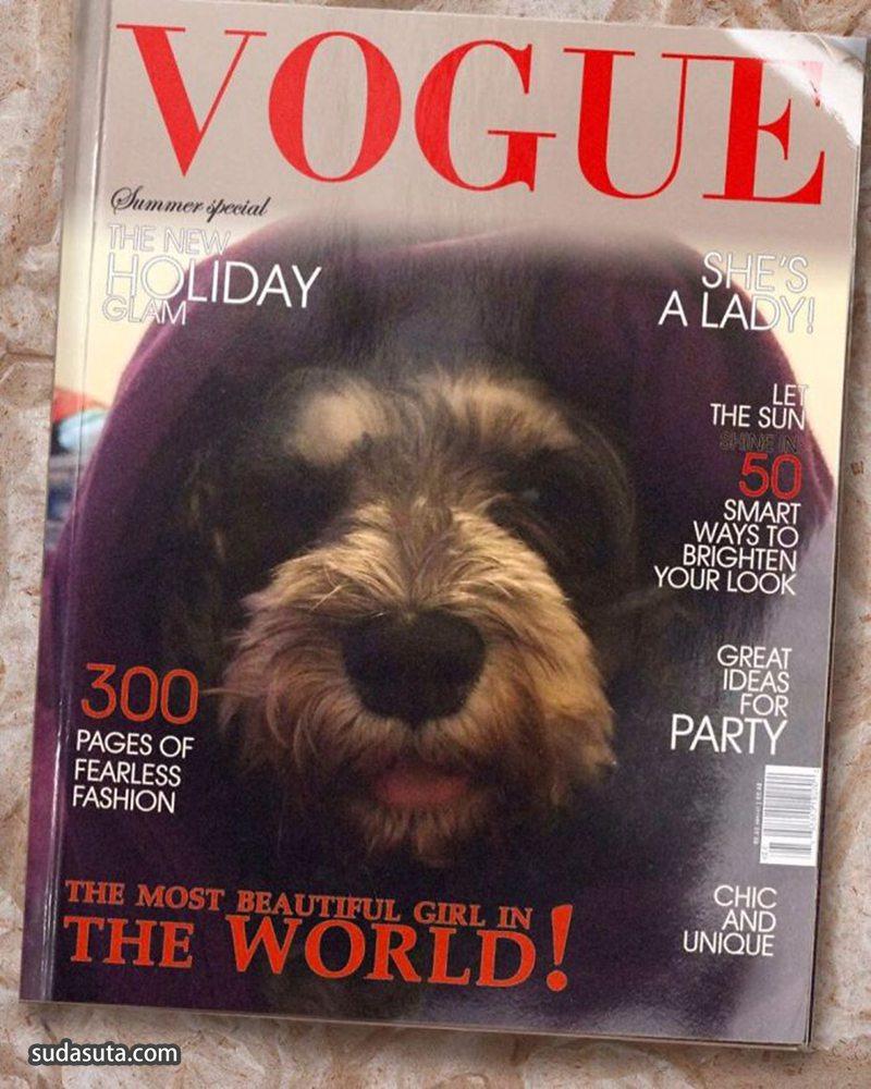 """Dogue"" 时尚宠物杂志封面设计欣赏"