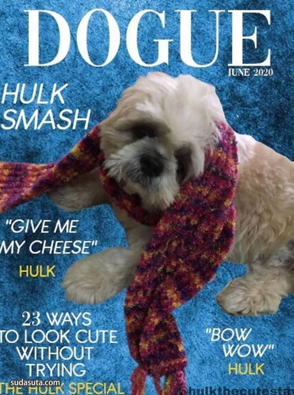 """""""Dogue"""" 时尚宠物杂志封面设计欣赏"""