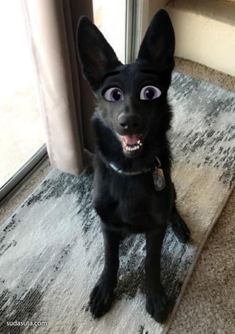 迪士尼狗狗全新上线!