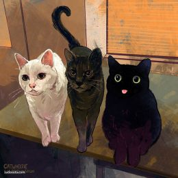 Emily Paquin 天天画猫