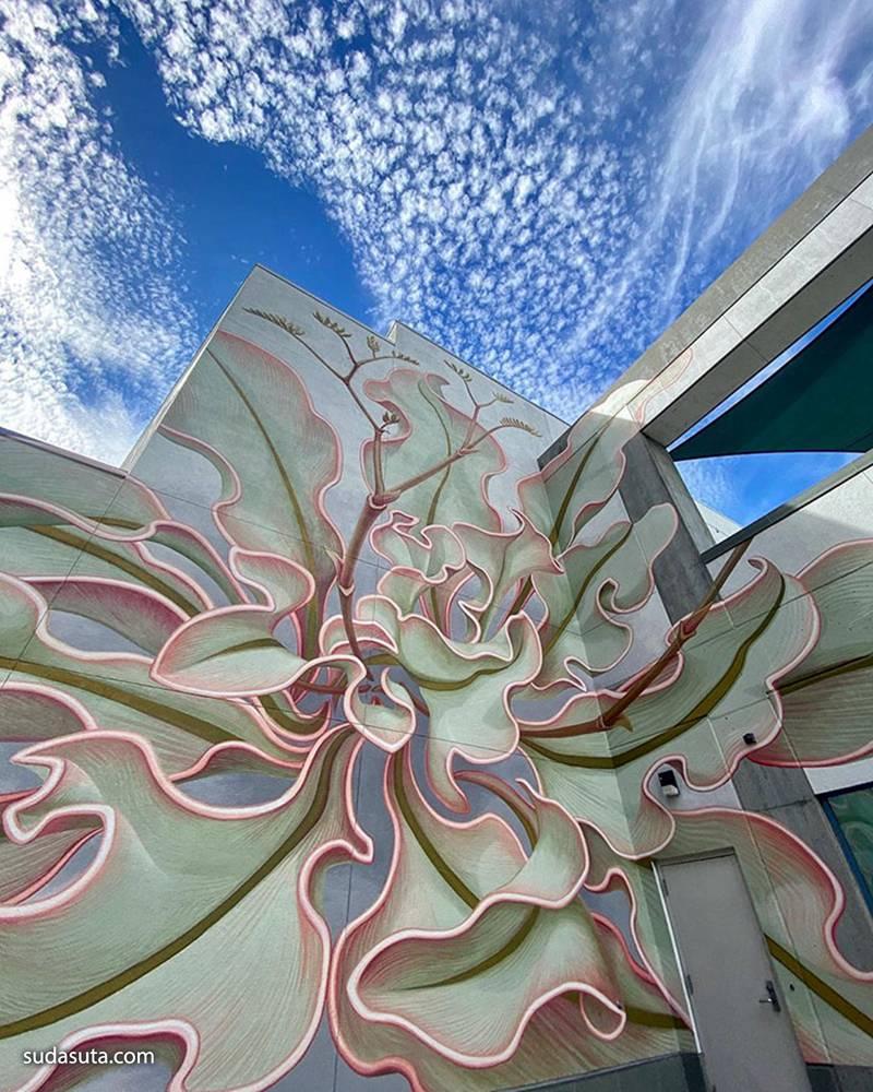 Mona Caron 墙上的花 城市墙绘