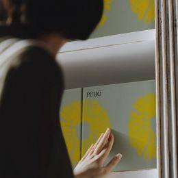 PUHO 菠萝蛋糕 包装设计欣赏