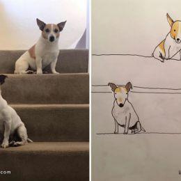 Hercule Van Wolfwinkle 不一样的宠物漫画