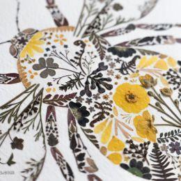 Helen Ahpornsiri 花草的混合艺术