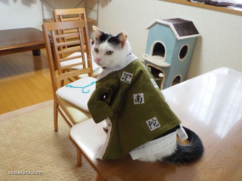 YagyouNEKO 猫咪的角色扮演