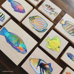 Colleen Wilcox 在夏威夷一直画鱼