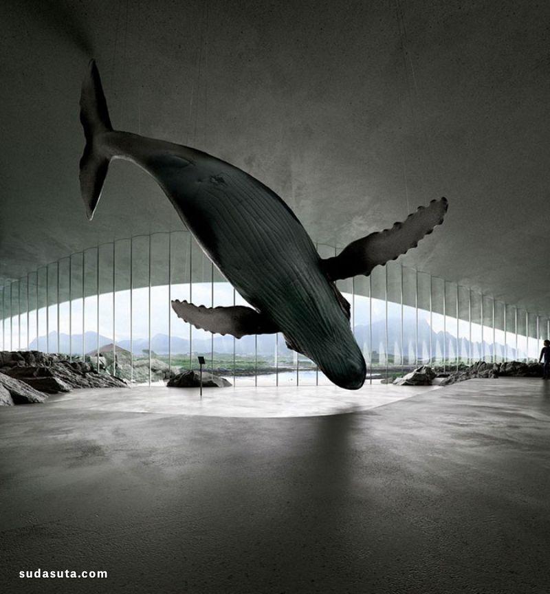 The Whale 建筑设计欣赏