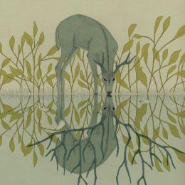 Daniela Gallego 魔法与植物!细腻唯美的插画作品欣赏
