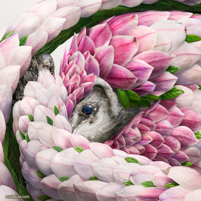 Josh Dykgaaf 数字艺术作品欣赏